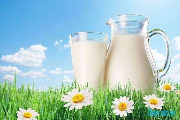 Bị thoái hóa đốt sống cổ uống sữa có tốt không